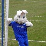 Peterborough Mascot