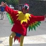LUTP_brazil_parrot_draw_thumb